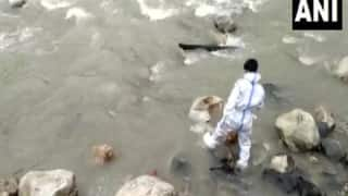 Dogs Feed On Bodies of Suspected COVID Patients At Uttarakhand Riverbank, Locals Say 'Death Of Humanity'