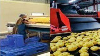 Food Processing Hub: यूपी बना फूड प्रोसेसिंग के लिए उद्योगपतियों का पसंदीदा क्षेत्र
