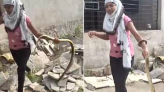 Viral Video: Fearless Girl Catches King Cobra With Just One Hand, People Are Stunned | Watch
