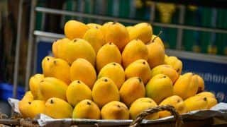 Jamshedpur Girl Gets Rs 1.2 Lakh From Selling Mangoes, Buys Smartphone For Online Classes