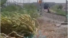 Railway Track Stunt Video:  रेलवे ट्रैक पर स्कूटी में स्टंट कर रहा था व्यक्ति, अचानक पीछे से तेज रफ्तार में आ गई ट्रेन, वीडियो देख दहल जाएगा आपका दिल