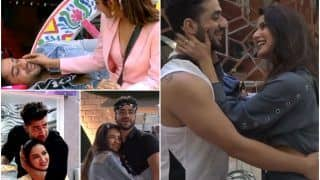 Aly Goni Sends Birthday Love To Jasmin Bhasin With This Adorable Bigg Boss Edit, Fans Call It 'Most Awaited Post'