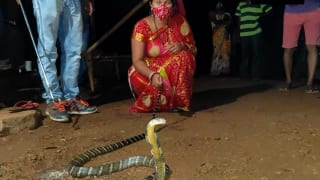 Odisha Woman Sees Her Child Crawl Towards 8-Ft-Long King Cobra, Grabs The Snake With Her Hands