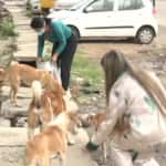 Humanitarian Act: 2 Girls From J&K's Udhampur Feed Stray Dogs Amid Lockdown