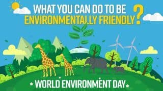 World Environment Day 2021 | What Steps You Can Take to be Environment Friendly? Watch Video