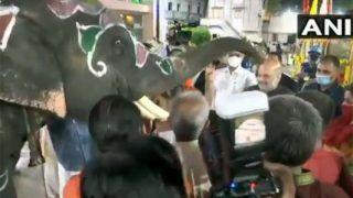 Video: अमित शाह ने मंदिर के हाथी को खिलाए फल, खुश गजराज ने सिर पर कई बार रखी अपनी सूंड