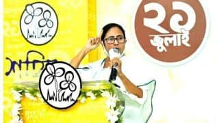 Mamata Banerjee's 'Idol' To Share Space with Devi Durga in Kolkata Pandal