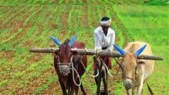 PM Kisan Samman Update: इस राज्य के 9.5 लाख किसानों को नहीं मिलेगी पीएम किसान सम्मान की 9वीं किस्त, जानें अपडेट