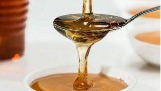 Honey Mission Yojana: शहद के कारोबार से हर महीने कमाएं 1 लाख रुपये, सरकार करेगी आर्थिक मदद