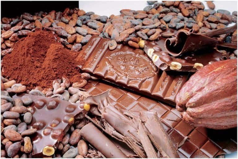 World Chocolate Day 2021: Why Switzerland is a Haven For Chocolate Lovers!
