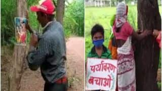 Chhattisgarh Activist Pastes Pictures of Lord Shiva on Trees to Prevent Them From Being Cut   Watch