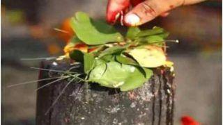 Bel Patra Niyam Sawan 2021: शुरू होने वाला है सावन का महीना, उससे पहले जान लें शिवलिंग पर बेलपत्र चढ़ाने के कुछ खास नियम