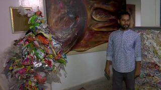 Delhi-based Artist Gains Praises After Collecting 250kgs Plastic Waste and Turning it into Artwork