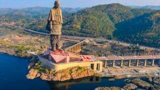 Over 190 Crocodiles Relocated from Lake Near Statue of Unity in Gujarat's Narmada District