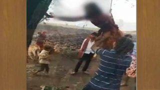 MP: 20 साल की शादीशुदा युवती को पेड़ से टांगकर बेरहमी से पीटा, वीडियो वायरल होने पर 4 भाई अरेस्ट