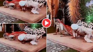 Bride Groom Push-ups Video: स्टेज पर ही पुश-अप्स मारने लगे दूल्हा और दुल्हन, पर हरा नहीं पाए पतिदेव | वीडियो हुआ Viral