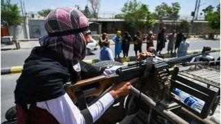 Taliban Skinned Alive Christian Afghan, Hung Him on Pole: Report