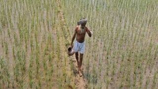 PM Kisan Samman Nidhi Yojana: Good News For Farmers, Govt to Disburse Pending Amount Along With Next Installment