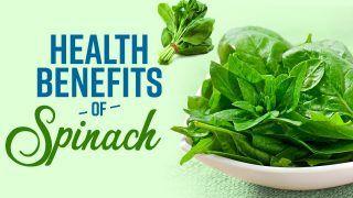Health Benefits Of Spinach: पालक खाने से नहीं होगी आपको खून की कमी; जानें और भी कई फायदे