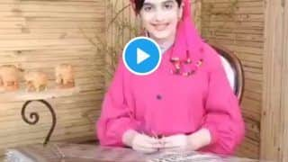 Viral Video: Iranian Girl's Beautiful Rendition of 'Jana Gana Mana' on a Santoor is Winning Hearts of Indians on 75th Independence Day | WATCH