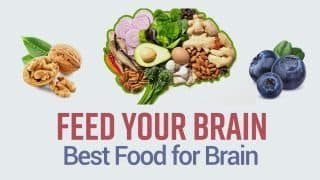 Best Foods That Boost Your Brain And Improve Brain Health  Watch Video To Know
