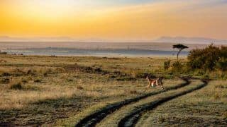 Great News! Kenya Reopens Borders For Travellers From India. Check Covid Guidelines Here