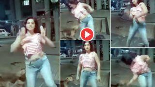 Ladki Ke Dance Ka Video: रात में बाहर डांस कर रही थी लड़की, पीछे से चुपचाप डॉगी भी आ गया, फिर जो हुआ हंसी नहीं रुकेगी | देखिए ये वीडियो