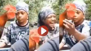 बांग दे रहा था मुर्गा तभी लड़के ने पकड़ ली गर्दन, फिर जो हुआ देखकर हंसी नहीं रुकेगी   देखिए ये मजेदार वीडियो