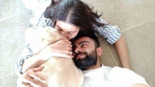 अवारा जानवरों की मदद के लिए मैं Anushka Sharma से प्रेरित हुआ, उनके सुरक्षित आवास बनाना हमारा सपना: Virat Kohli