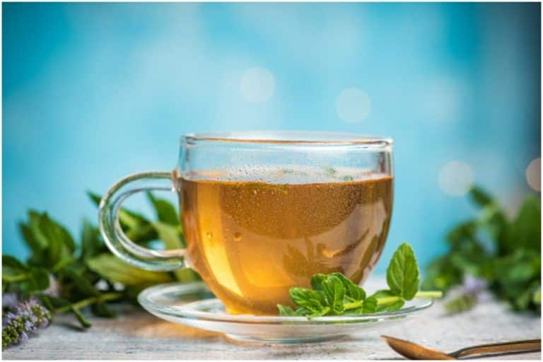 Should Children Drink Green Tea? Here's What We Know