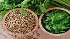 Hara Dhaniya Ke Fayde: बहुत काम आता है सब्जी के साथ फ्री में मिलने वाला हरा धनिया, इन सभी बीमारियों को करता है दूर