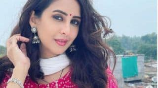 Actor Chahat Khanna's Estranged Husband Gets Protection from Arrest in Rape And Unnatural Sex Allegations