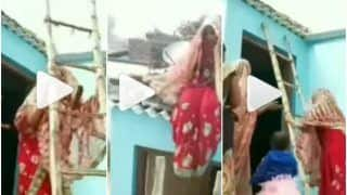 Viral Video: Angry Bride Climbs Up a Ladder, Refuses to Come Down From Roof | Watch