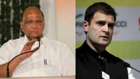 All is not well between Sharad Pawar & Rahul Gandhi