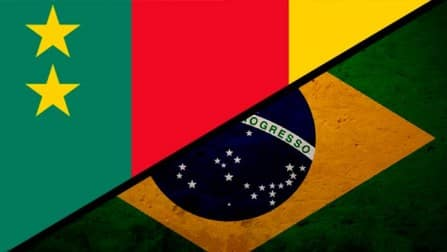 Cameroon vs Brazil, FIFA World Cup 2014: Facts Punch of 36th Match
