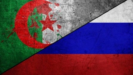 Algeria vs Russia, FIFA World Cup 2014: Facts Punch of 47th Match